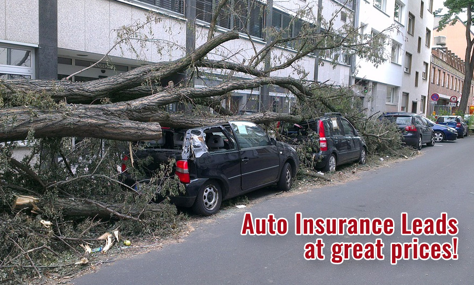 exclusive auto insurance leads